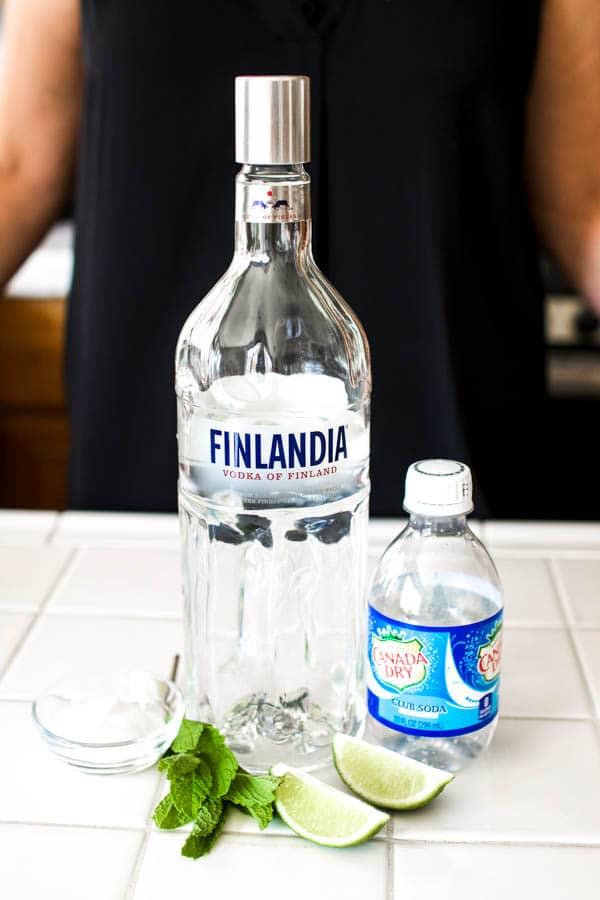 ingredients for vodka mojito recipe